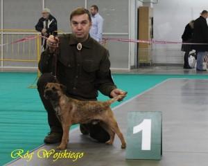GRANDE Róg Woskiego - Młodzieżowy Champion Polski, Młodzieżowy Zwycięzca Polski 2010, Zwycięzca Polski 2011
